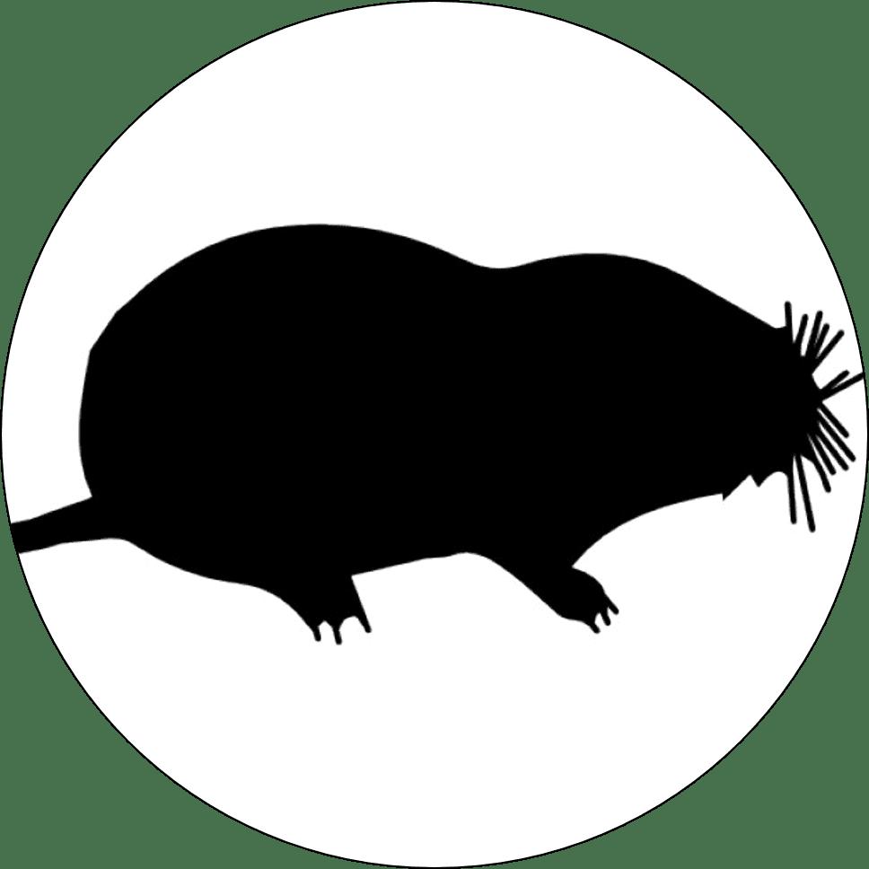 mole control hampshire